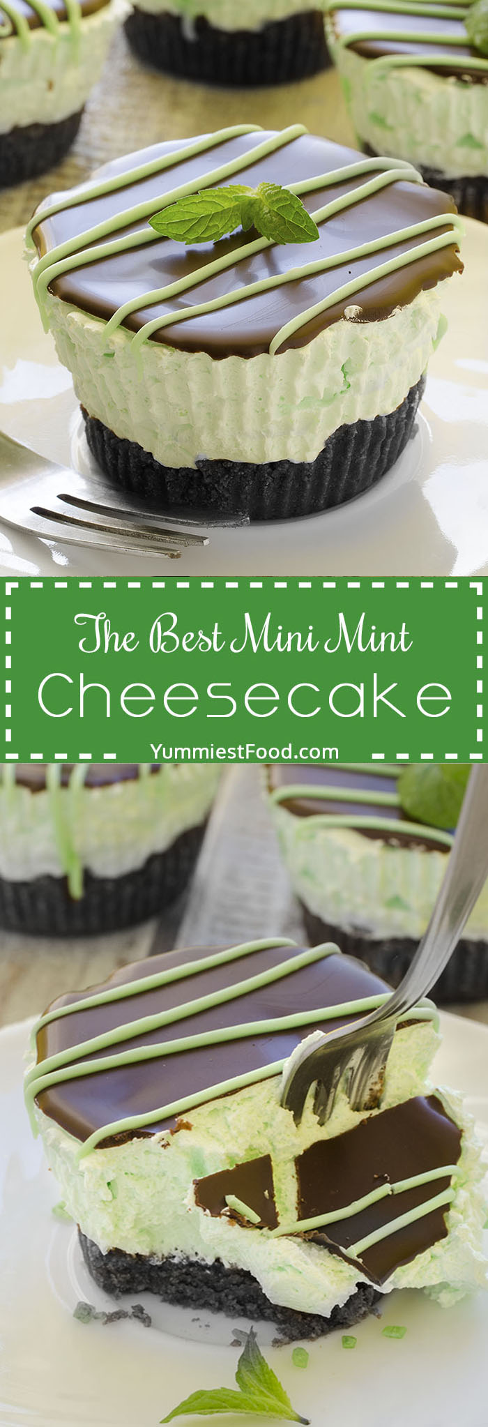 The Best Mini Mint Cheesecake with an Oreo crust and only a few ingredients