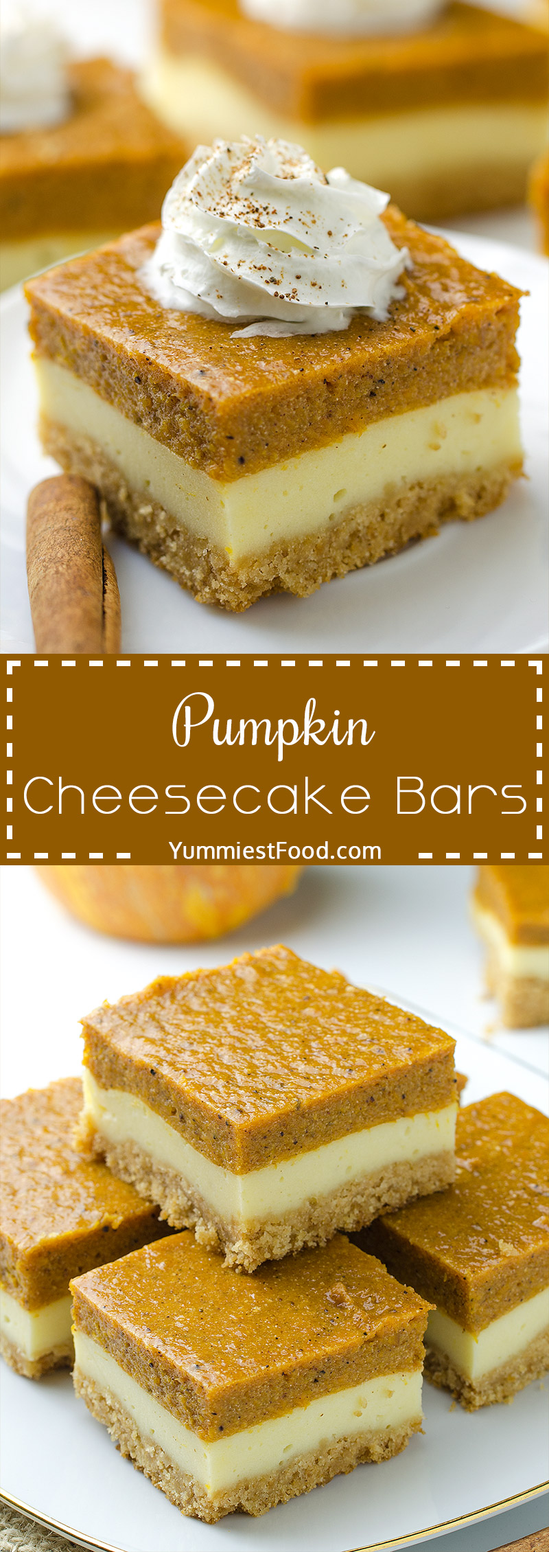 Pumpkin Cheesecake Bars - A super tasty sweet treat during the fall and holiday season